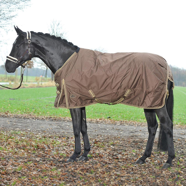 Busse Move Winter 200 Turnout Rug Brown 603094