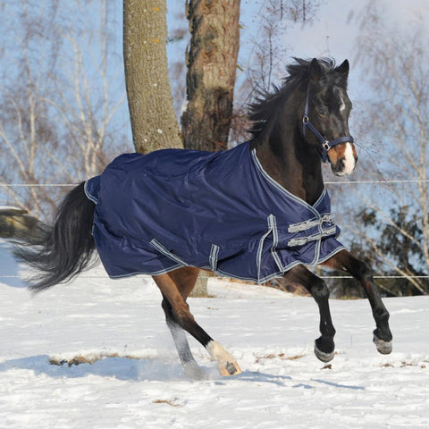 Busse Move Winter 200 Turnout Rug Navy Snow Scene 603094