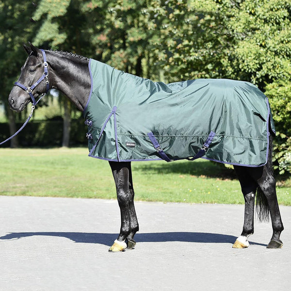 Busse Riga Light 100 Thermo Turnout Rug Green 603157