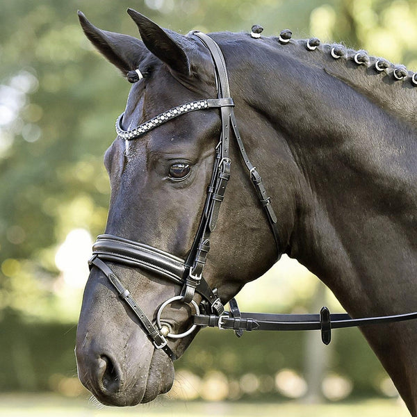Busse Solibel Comfort Bridle Grey and White Crystals with Black Padding 120054