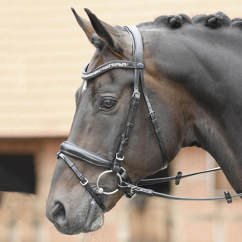 Busse Solibel Glory Bridle 120052