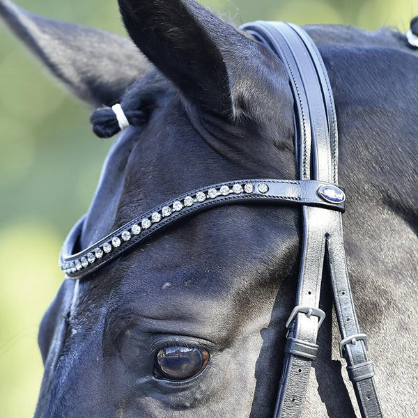Busse Solibel Luxury Bridle Black Browband Close Up 120076