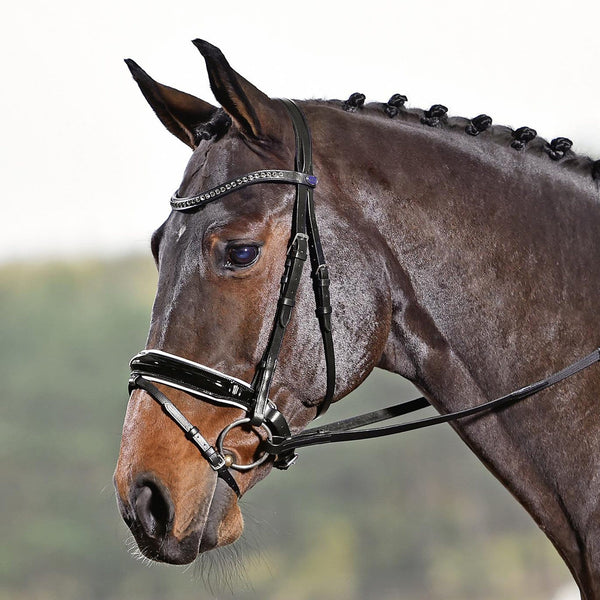 Busse Solibel Luxury Bridle Black and White 120076