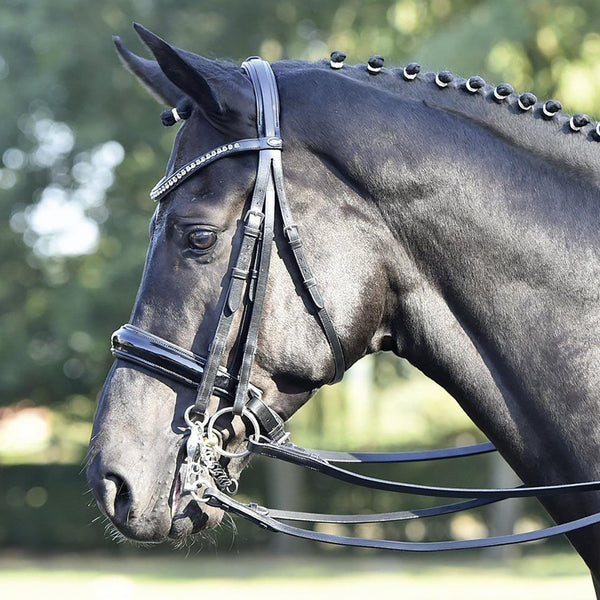 Busse Solibel Luxury Double Bridle Black 120077