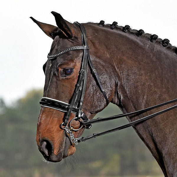 Busse Solibel Luxury Double Bridle Black and White 120077