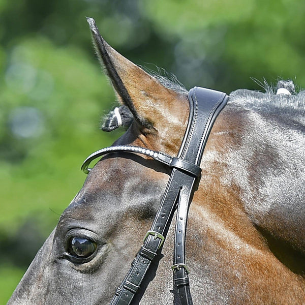 Busse Mailand Bridle Headpiece Close Up 120904