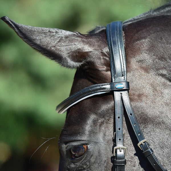 Busse Solibel Professional Soft Bridle Black and White Headpiece Close Up 120040