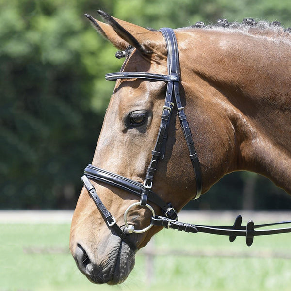 Busse Solibel Single Soft Bridle Crystal 120048