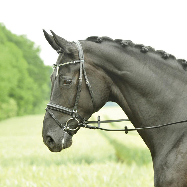 Busse Solibel Single Soft Bridle Multi Crystal 120048