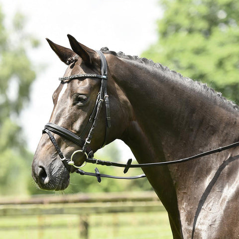 Busse Solibel Single Soft Bridle Strass Black 120048