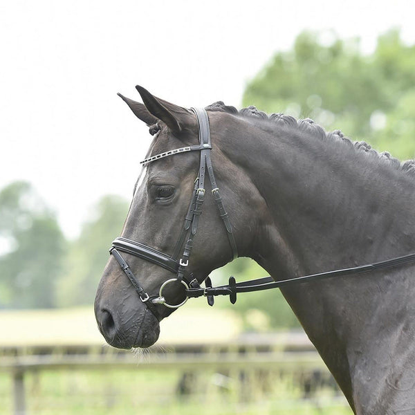 Busse Solibel Single Soft Bridle Strass Duo 120048