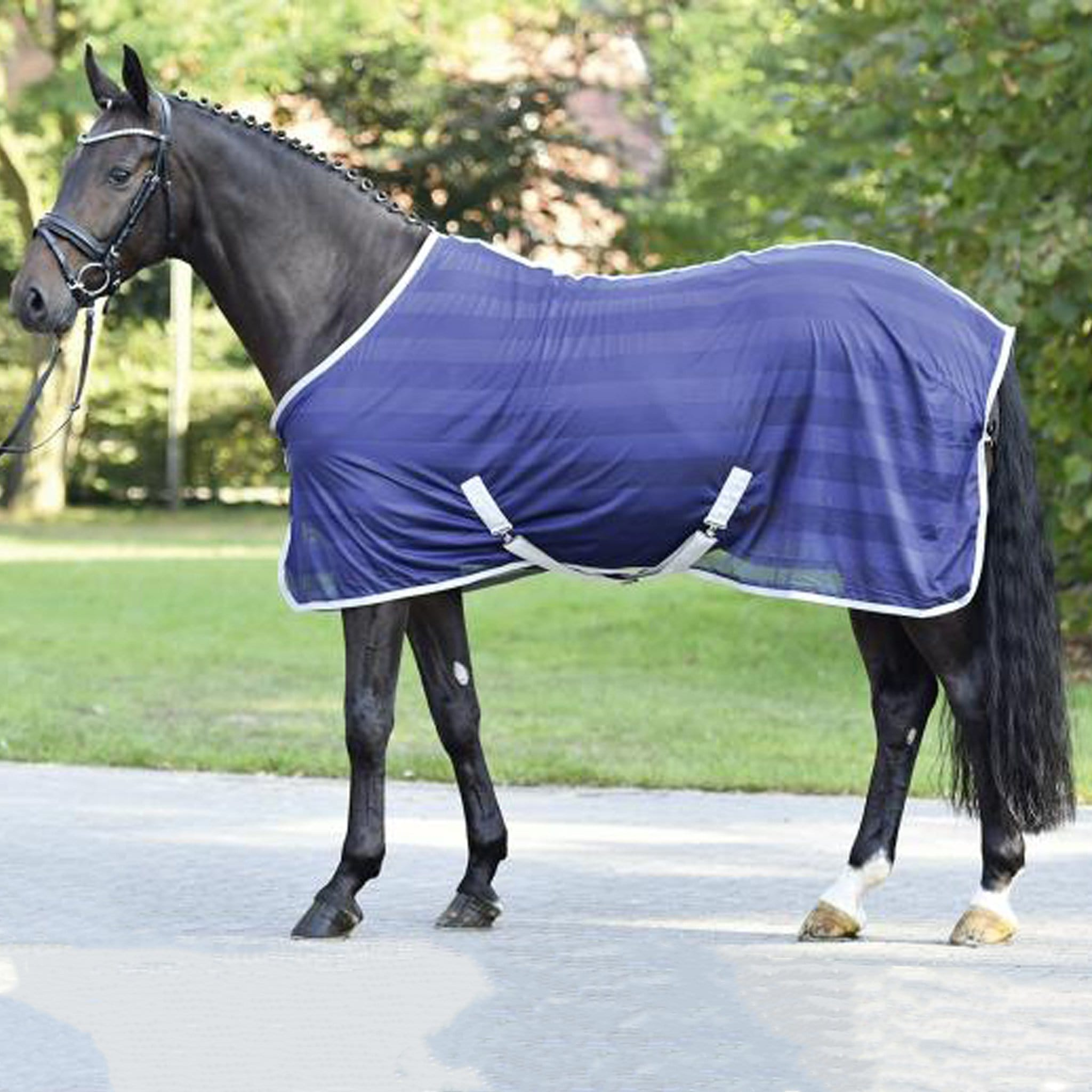Busse Stripe Transport Standard Neck Fly Rug Navy 603149