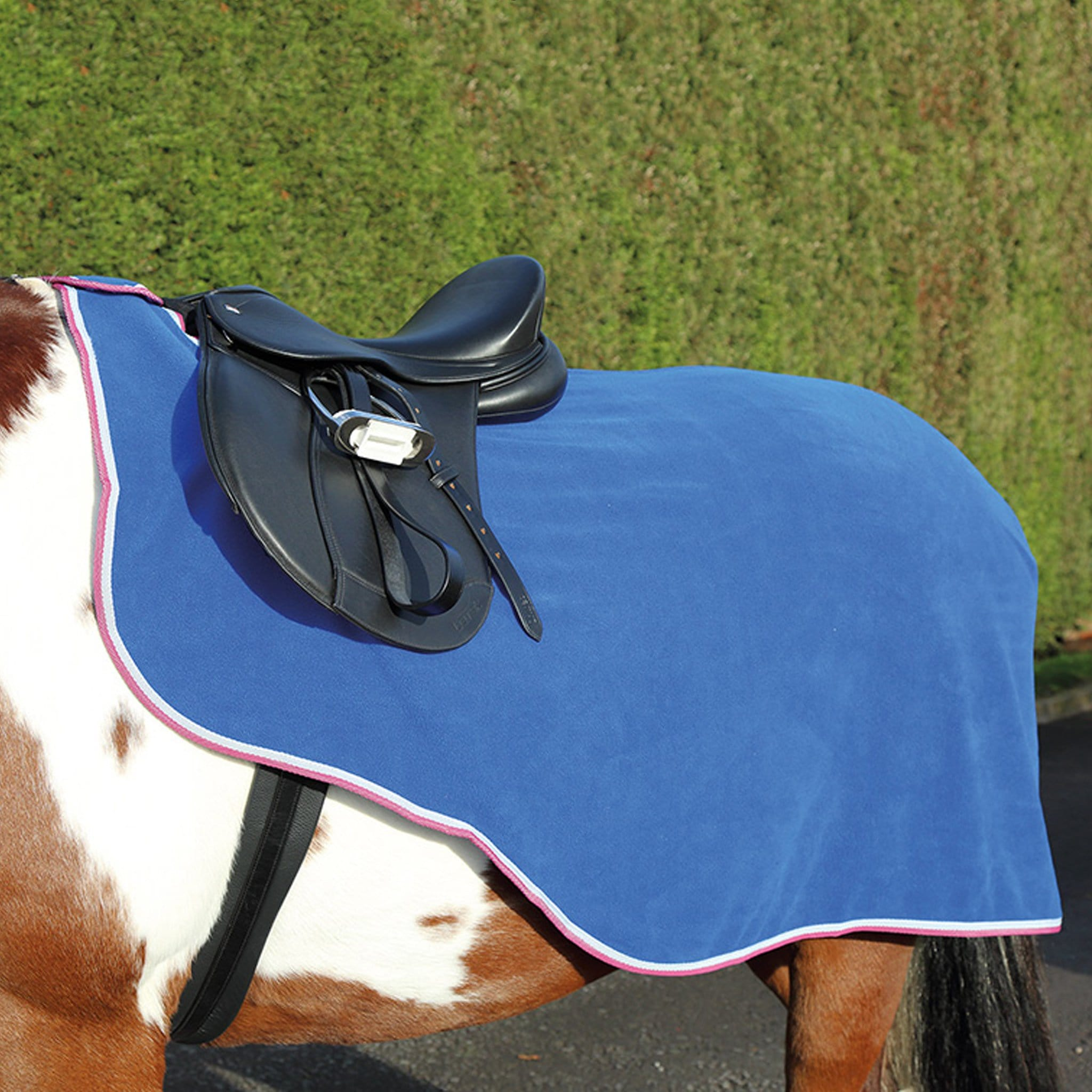 Shires Tempest Original Fleece Exercise Sheet Royal Blue 9458