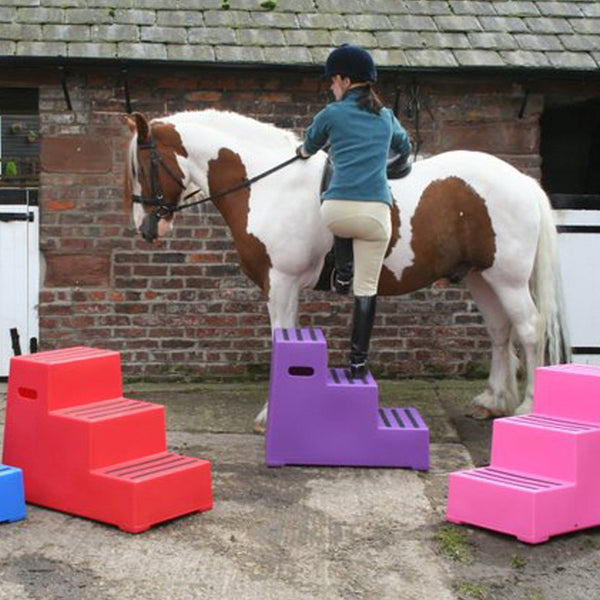 Classic Showjumps Premium Three Tread Mounting Block Lifestyle