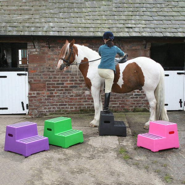 Classic Showjumps Premium Two Tread Mounting Block Lifestyle