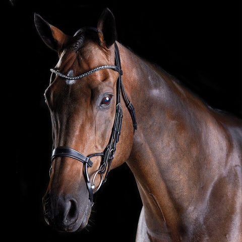 Collegiate ComFiTec Crystal Bridle Black 807702