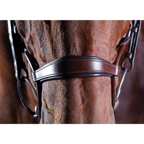 Collegiate ComFiTec Crystal Bridle Brown Noseband 807704