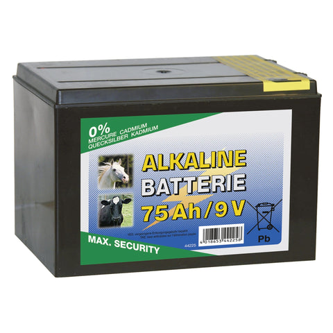 Alkaline Dry Battery CRL0020