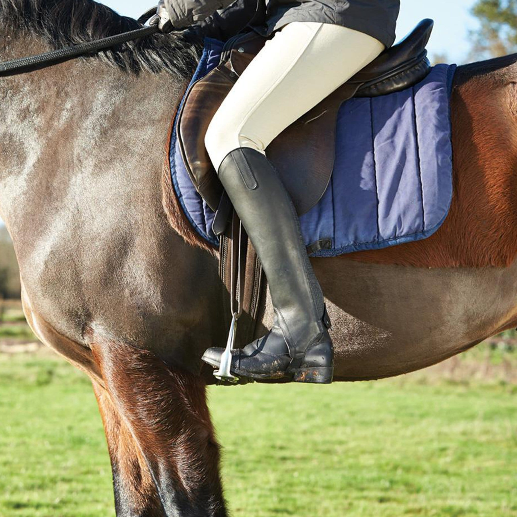 Dublin Meridian Gaiters Black Rider On Horse 589608