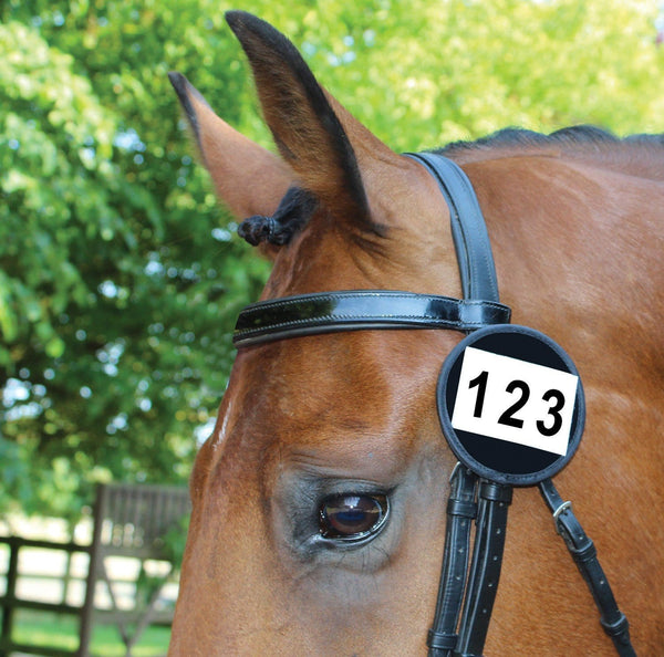Equetech Bridle Competition Numbers - Black | EQUUS