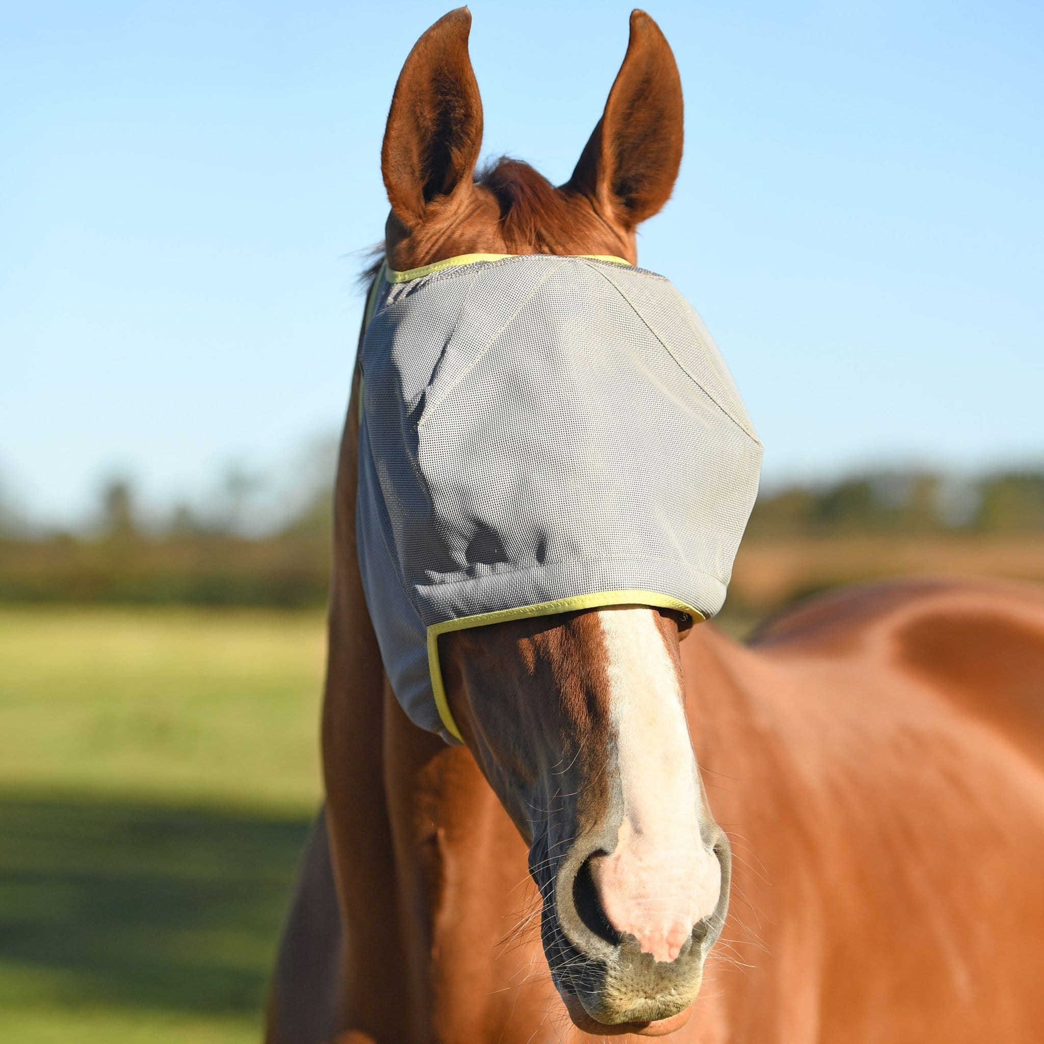 Equilibrium Field Relief Midi Fly Mask Without Ears Grey And Yellow EQB0815.