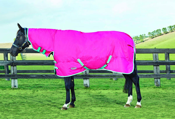 Weatherbeeta Genero 1200D Combo Lite Turnout Rug in Rose and Aqua 591985