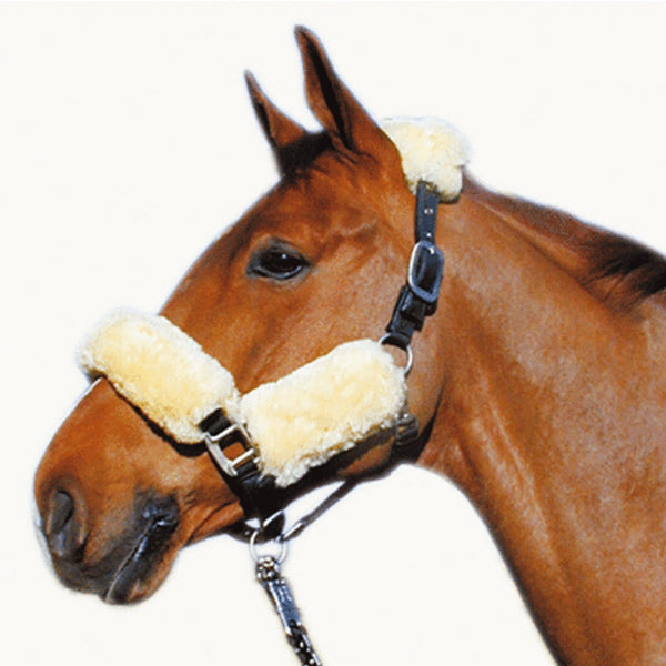 HKM Lambswool Head Collar Set