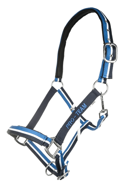 HKM Pro Team Global Team Headcollar in Corn Blue
