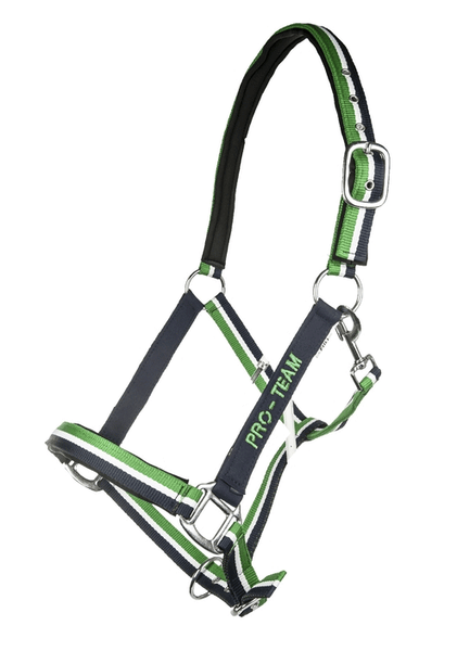 HKM Pro Team Global Team Headcollar in Grass Green
