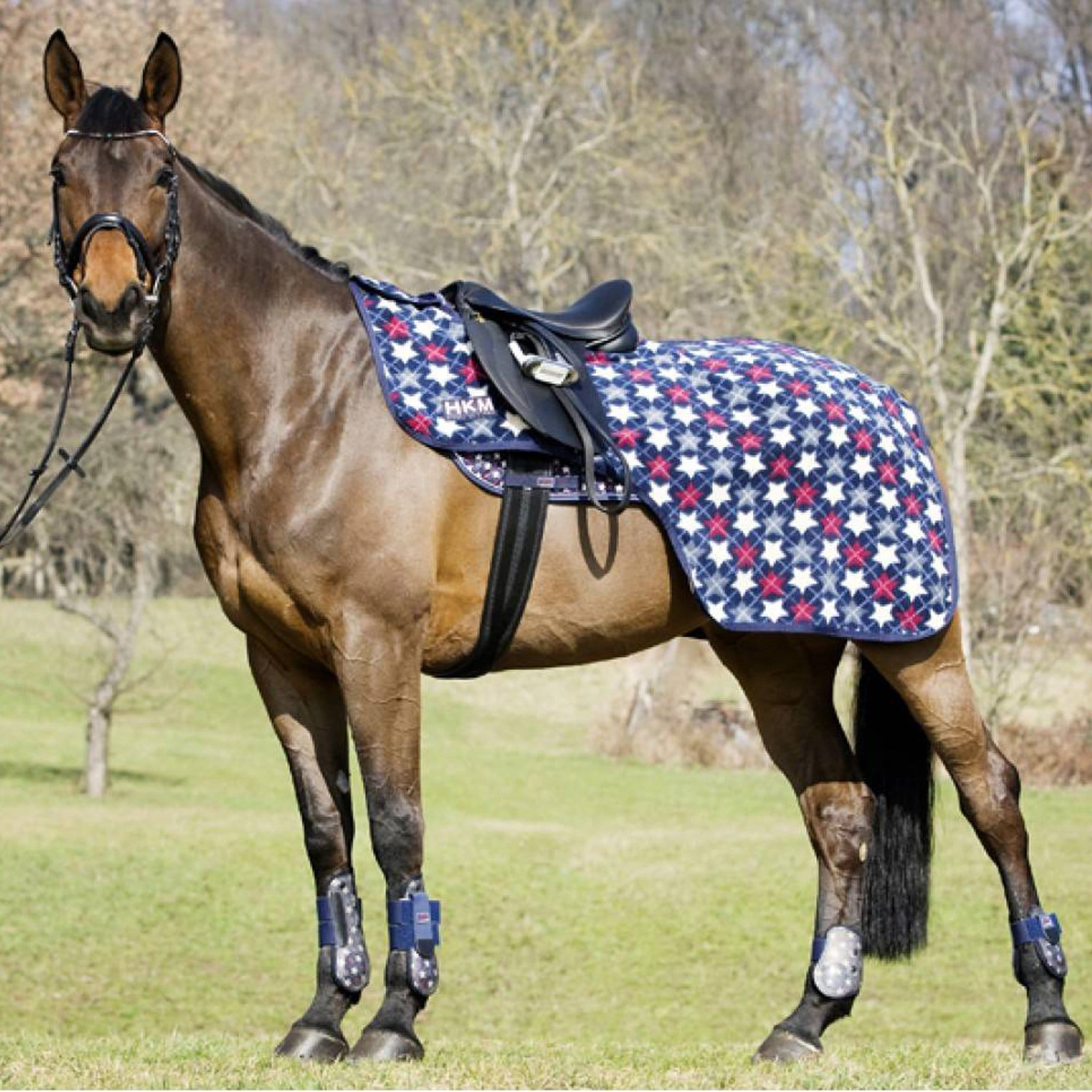 HKM Pro Team All Stars Exercise Sheet Bay Horse 1573