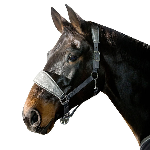 HKM Cavallino Marino Piemont Head Collar Deep Grey on Horse 10314/9300
