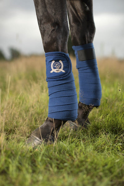 HKM Lauria Garrelli Queens Bandages in Navy worn by Horse 8273