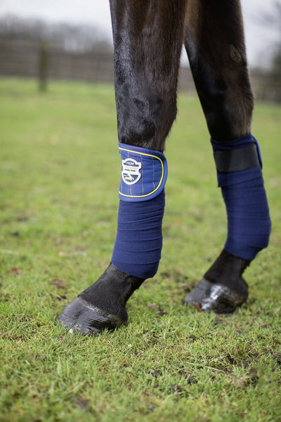 HKM Pro Team Flash Bandages in Corn Blue worn by Horse