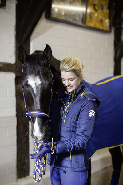 HKM Pro Team Flash Quilted Jacket worn by Rider with Horse