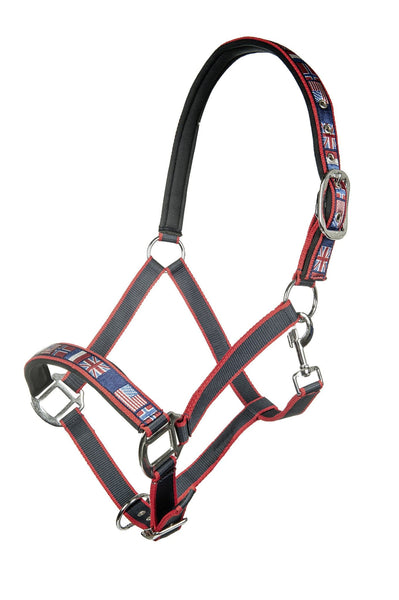 HKM Pro Team International Headcollar in Deep Blue
