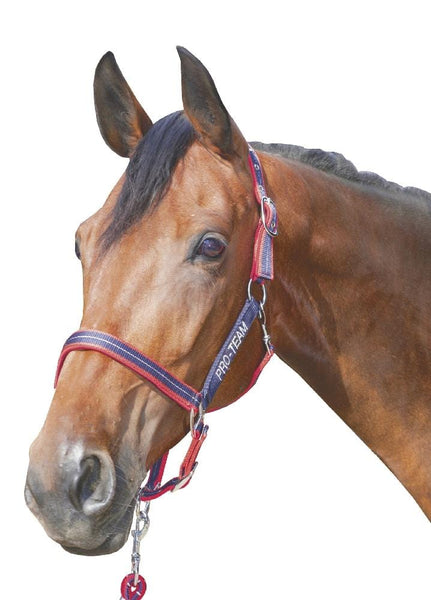 HKM Pro Team Performance Head Collar Deep Blue and Red Lifestyle 8760_6930