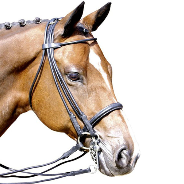HKM Rolled Leather Double Bridle RHS 6076