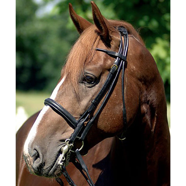 HKM Rolled Leather Double Bridle LHS 6076