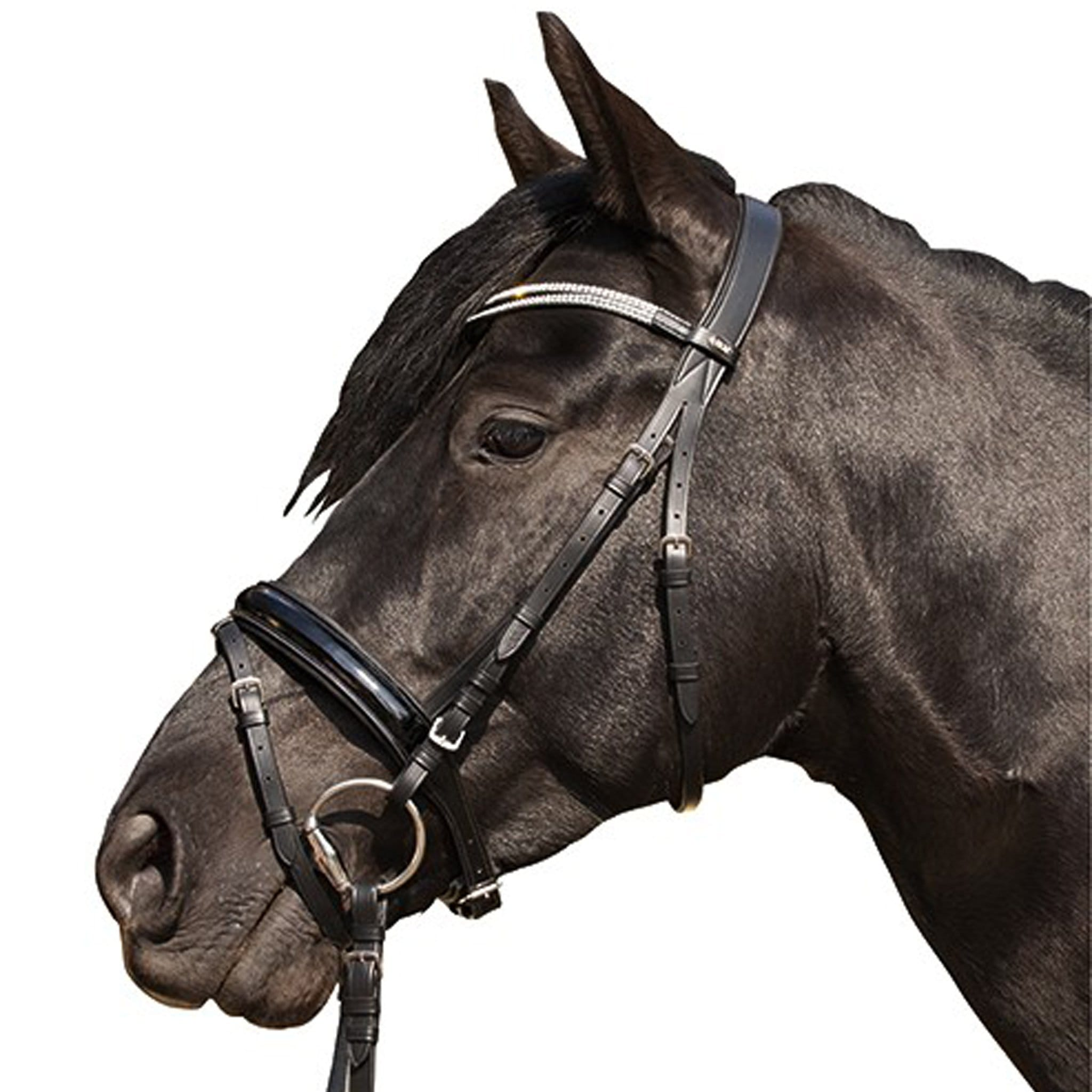 HKM Starlight Bridle on Horse 4239