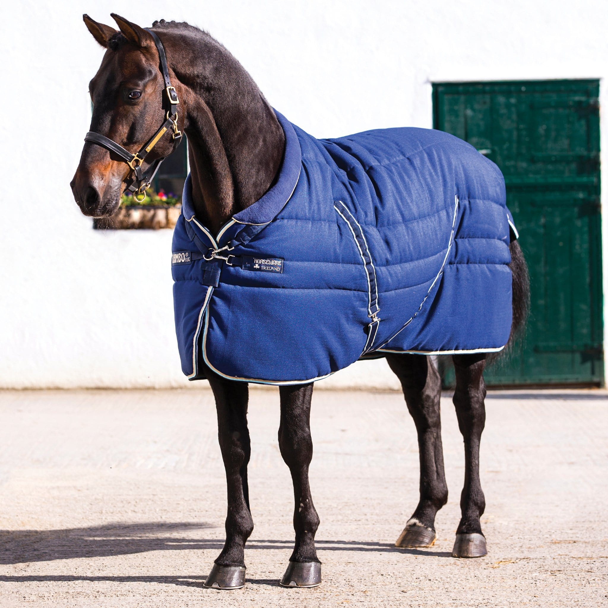 Rambo Cosy Stable Heavyweight 400g Standard Stable Rug Navy ABAE43.