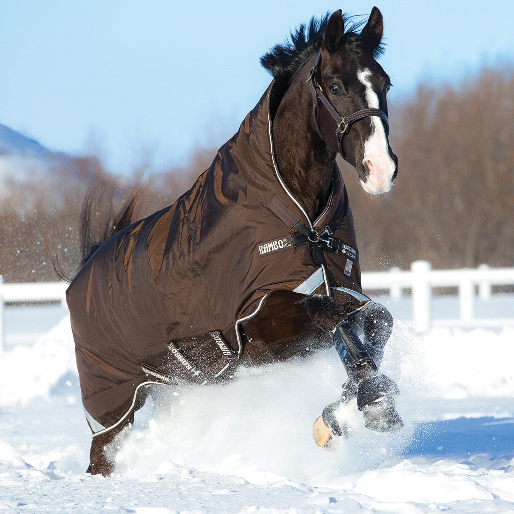 Rambo Wug with Vari-Layer Heavyweight 450g Standard Neck Turnout Rug AAAV33 Chocolate And Cream On Bay Horse In Snow.