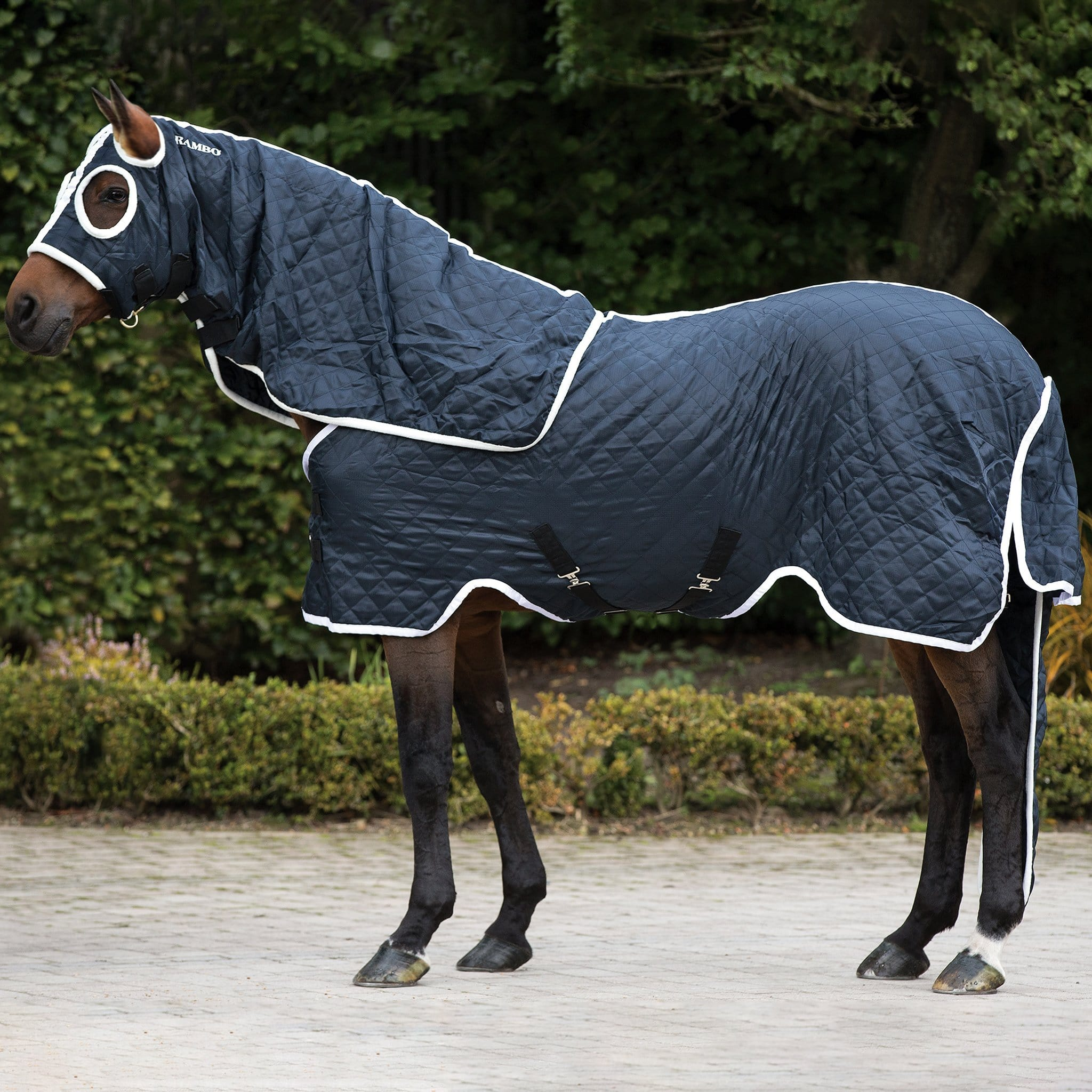 Rambo Show Set Lightweight 100g Detachable Neck Stable Rug On Horse Side View ACAU81.