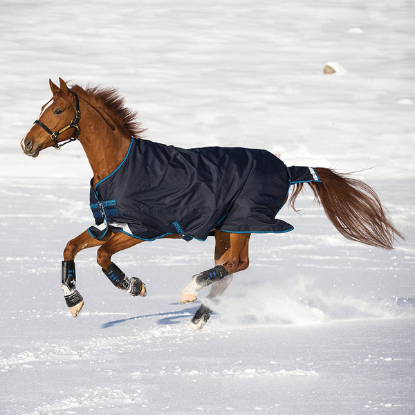 Horseware Amigo Bravo 12 Original Lite 100g Turnout Rug Navy Side View in the Snow AARA16