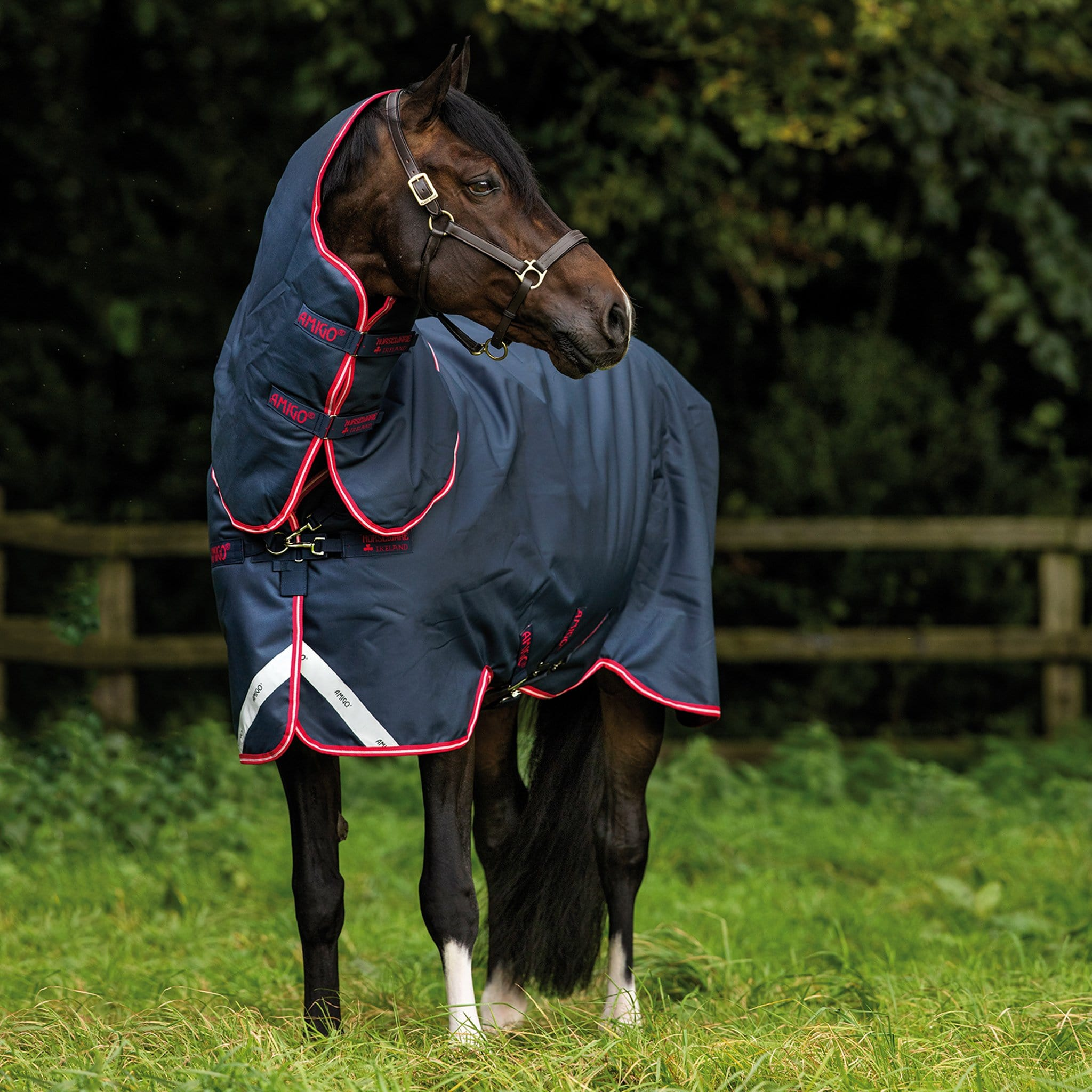 Amigo Bravo 12 Plus Mediumweight 250g Detachable Neck Turnout Rug Navy Front View AARP72