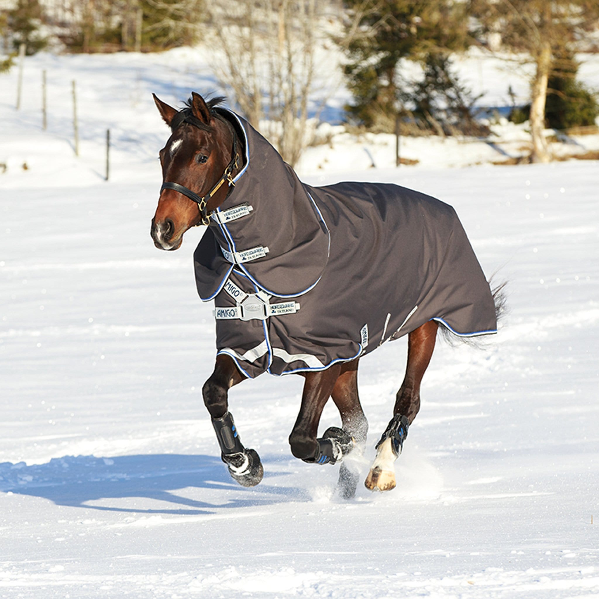 Amigo Bravo 12 Plus Mediumweight 250g Detachable Neck Turnout Rug With Disc Front Closure in the Snow AARPT2