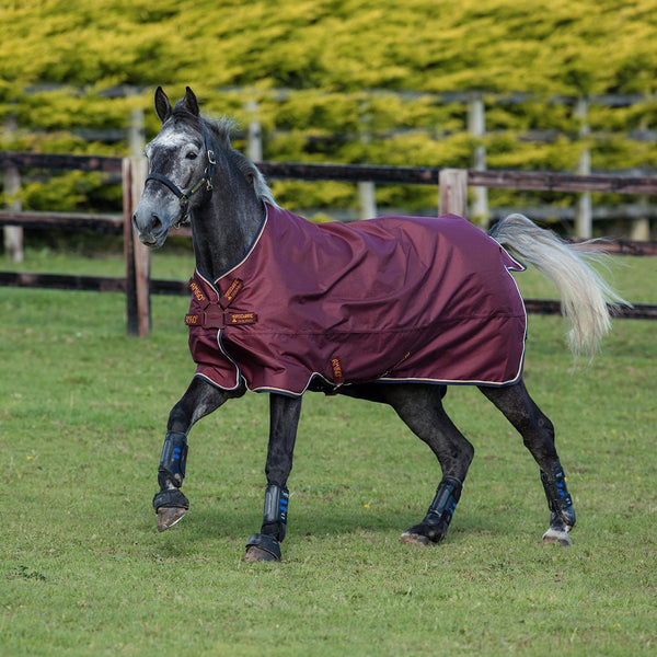 Horseware Amigo Hero ACY Lite 0g Turnout Rug with Disc Front Closure Burgundy AAKT80
