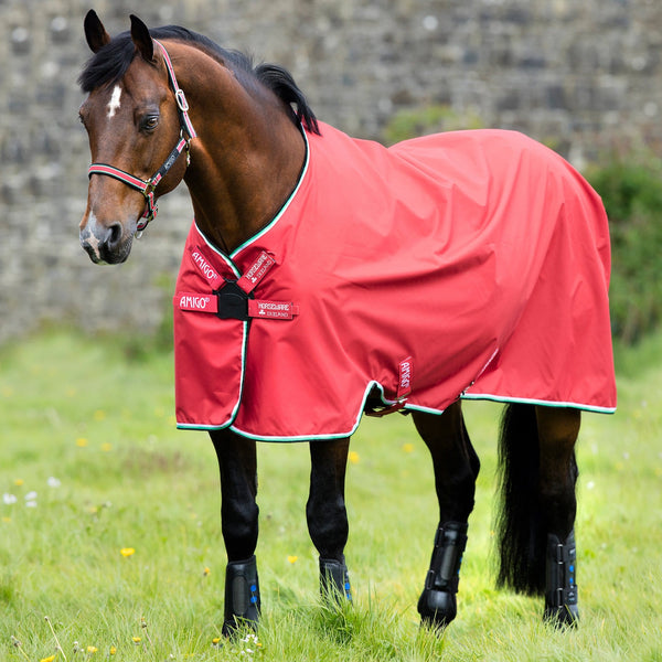 Horseware Amigo Hero ACY Lite 0g Turnout Rug with Disc Front Closure Red AAKT80