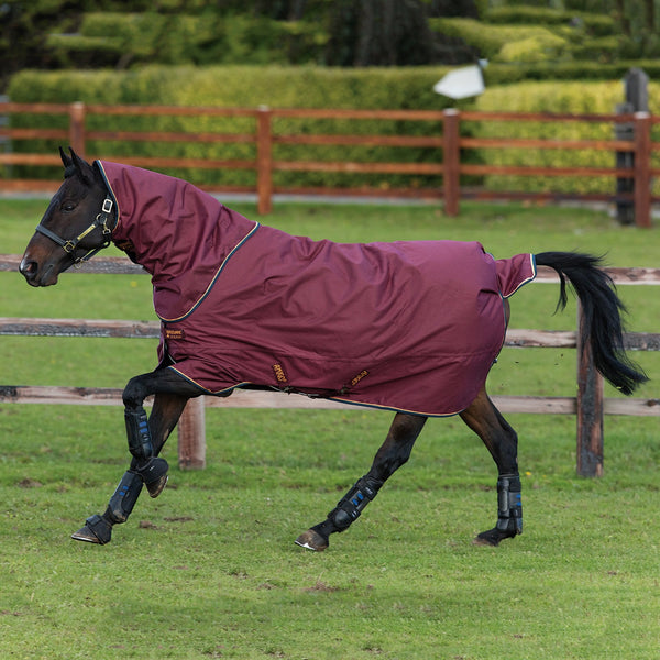 Horseware Amigo Hero ACY Plus Lite 100g Turnout Rug with Disc Front Closure AAKPT2