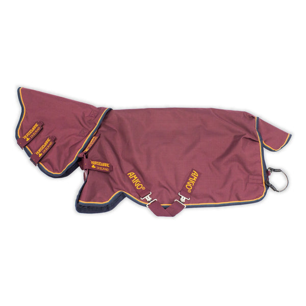 Horseware Amigo Hero ACY Plus Lite 100g Turnout Rug with Disc Front Closure Studio AAKPT2