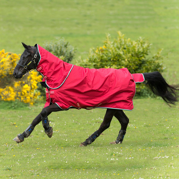 Horseware Amigo Hero ACY Plus Lite 0g Turnout Rug Red AAKP80